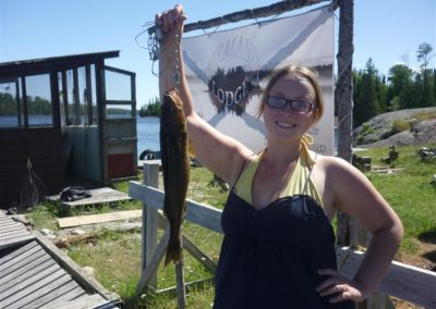 Jennys Walleye (Medium)